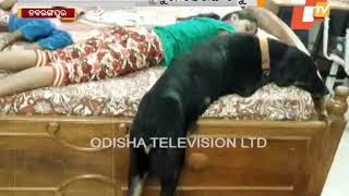 Odisha Man Performs Last Rites Of His Dog