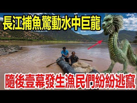 中國漁民長江捕魚驚動水中巨龍,身長數十米體型巨大,隨後壹幕發生漁民們紛紛逃竄!