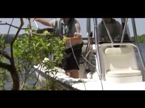 Boating Safety - PSA - One Summer Day
