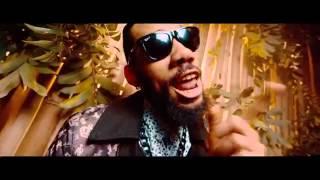 Phyno Nnunu Official Video ft  Stormrex