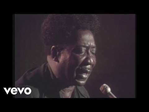 Muddy Waters - Honey Bee (Live)