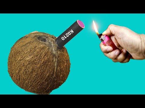 EXPERIMENT COCONUT VS FIRECRACKERS