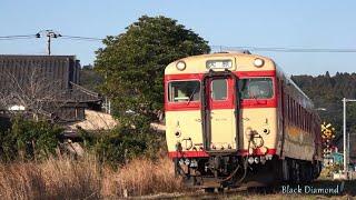 現役!国鉄型気動車 いすみ鉄道 キハ28・52 2017.1.22