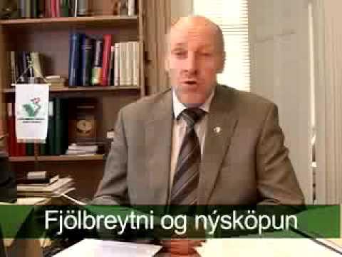 Efnahagur Íslands: Steingrímur J. Sigfússon