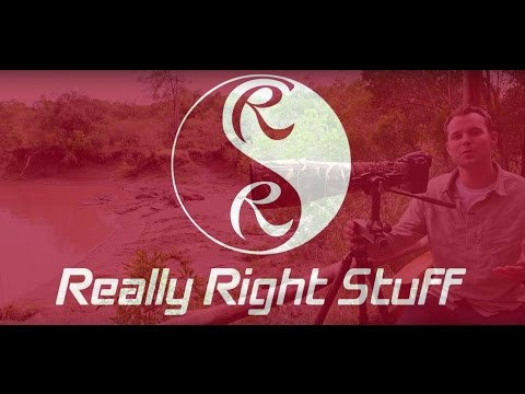 RRS FG-O2 Fluid-Gimbal Head Product Review