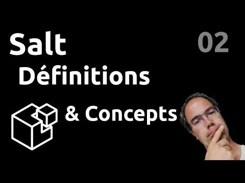 SALT - 02. Définitions & Concepts : minions, pillars, grains, reactor, beacon...