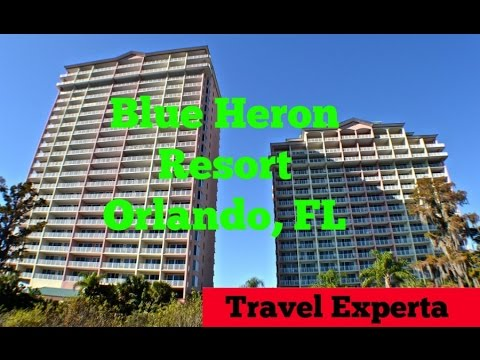 Blue Heron Beach Resort In Orlando Florida Family Friendly Review