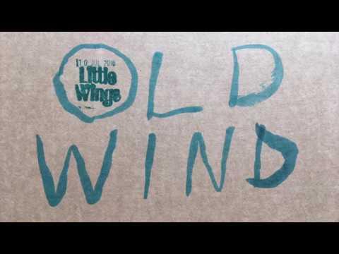 Little Wings -