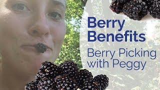 Berry Picking with Peggy - Berries are THE Anti Disease Food for All Chronic Health Struggles
