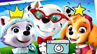 Щенячий патруль новые серии, фотосессия для щенков #1 - мультик игра для детей, #paw, #kids game