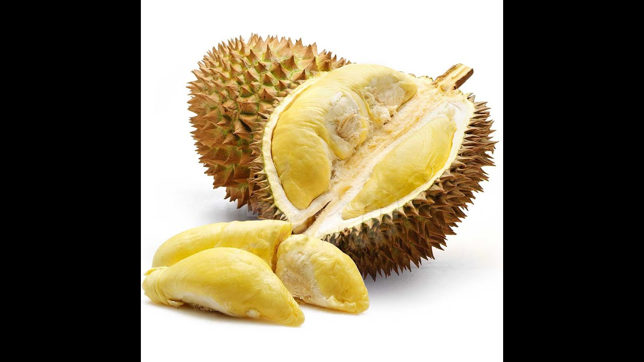 Image result for Three,Great,Health,Benefits,Of,Durian