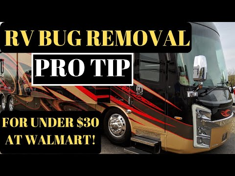 EASY WAY TO REMOVE BUGS FROM RV WINDSHIELD BY A PRO