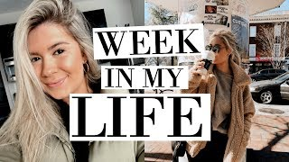 college week in my life: first week of classes at UGA