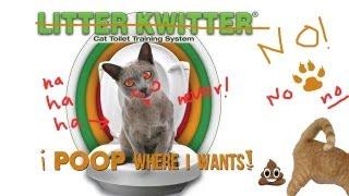 Cat Toilet training FAIL