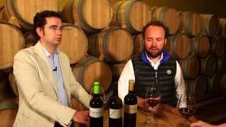 Los vinos de Montebaco - Todovino.com