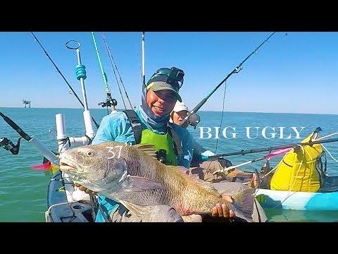 Kayak Shark Fishing And Catching 37' Big Ugly Offshore Corpus Christi