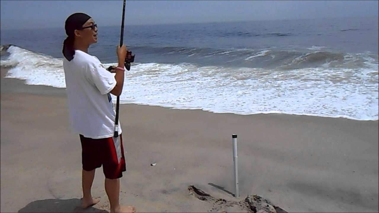 Striped Bass Surf Fishing @ Sandy Hook, NJ. Pugnose ...