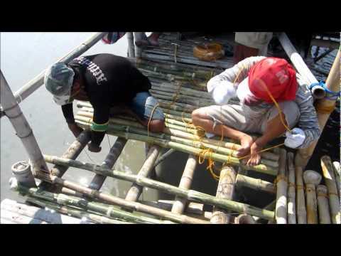 bangkung mapalad sasmuan pampanga natural bird sanctuary youtube