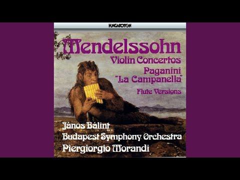 Concerto for Violin and Orchestra No. 2 in E minor Op. 64: I. Allegro molto appassionato