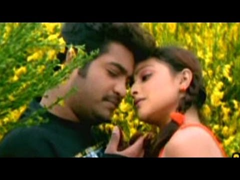 Subbu Telugu Movie || Love Passayyanu Video Song || NTR Jr, Sonali Joshi