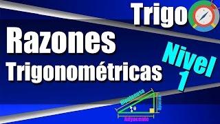 Razones Trigonométricas en el Triángulo Rectángulo Ejercicios Resueltos Nivel 1