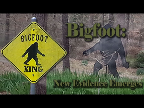 Is Bigfoot Real Or Fake: New Evidence Emerges - YouTube