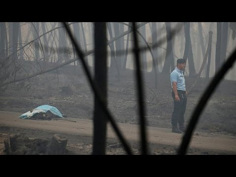 Portogallo, incendio boschivo fa 62 morti