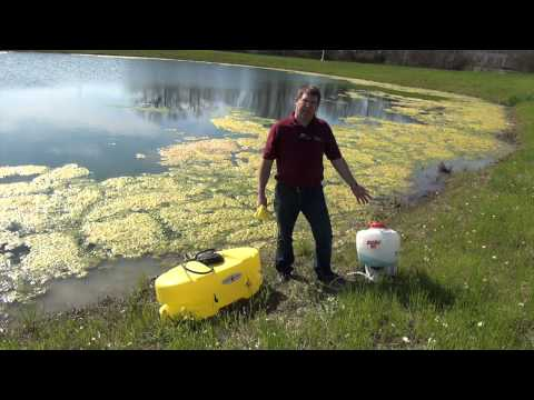 Controlling Algae In Farm Ponds