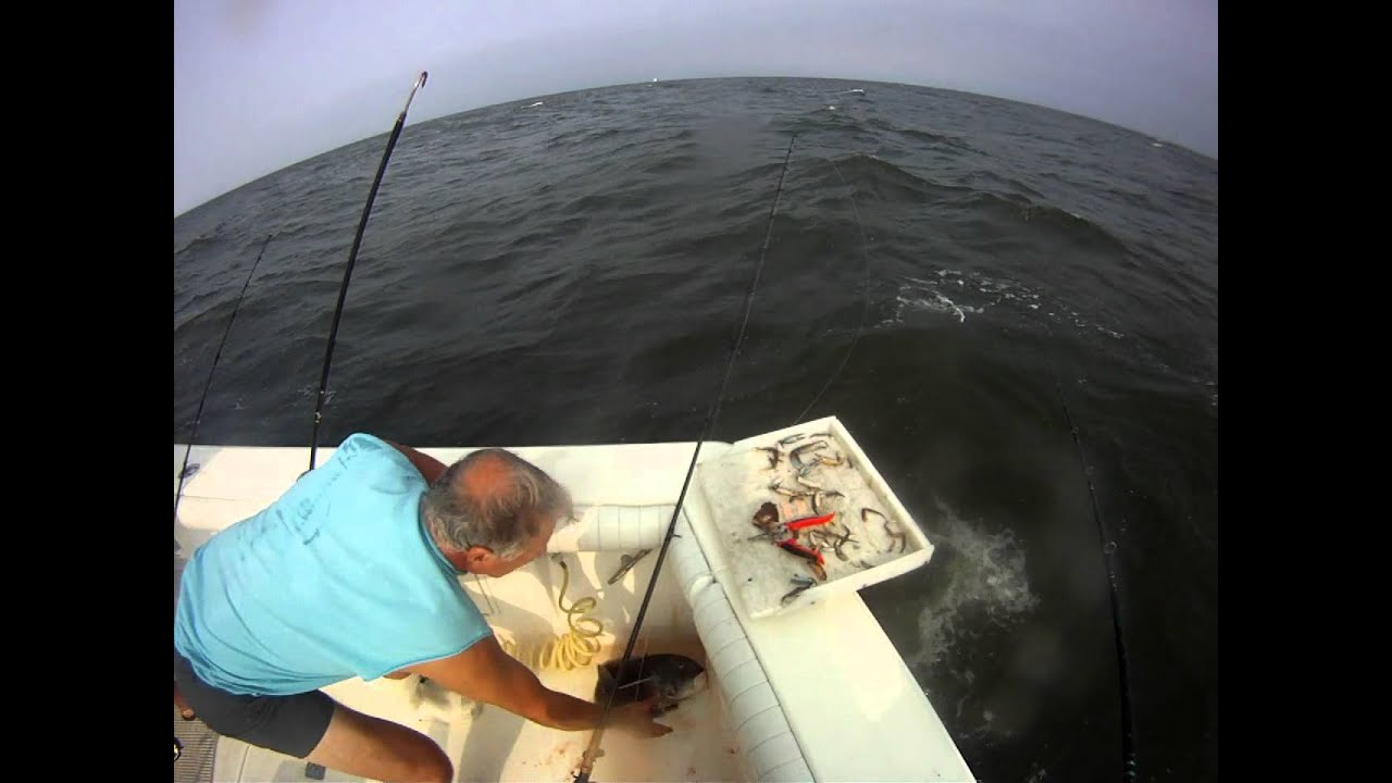 Tog fishing on mj 39 s youtube for Lbi fishing charters