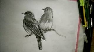 shading drawing easy birds lovely