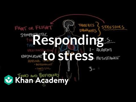 Responding To Stress | Processing The Environment | MCAT | Khan Academy