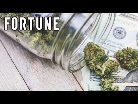 Marijuana Is More than a Consumer Good, It's an Investment I Fortune