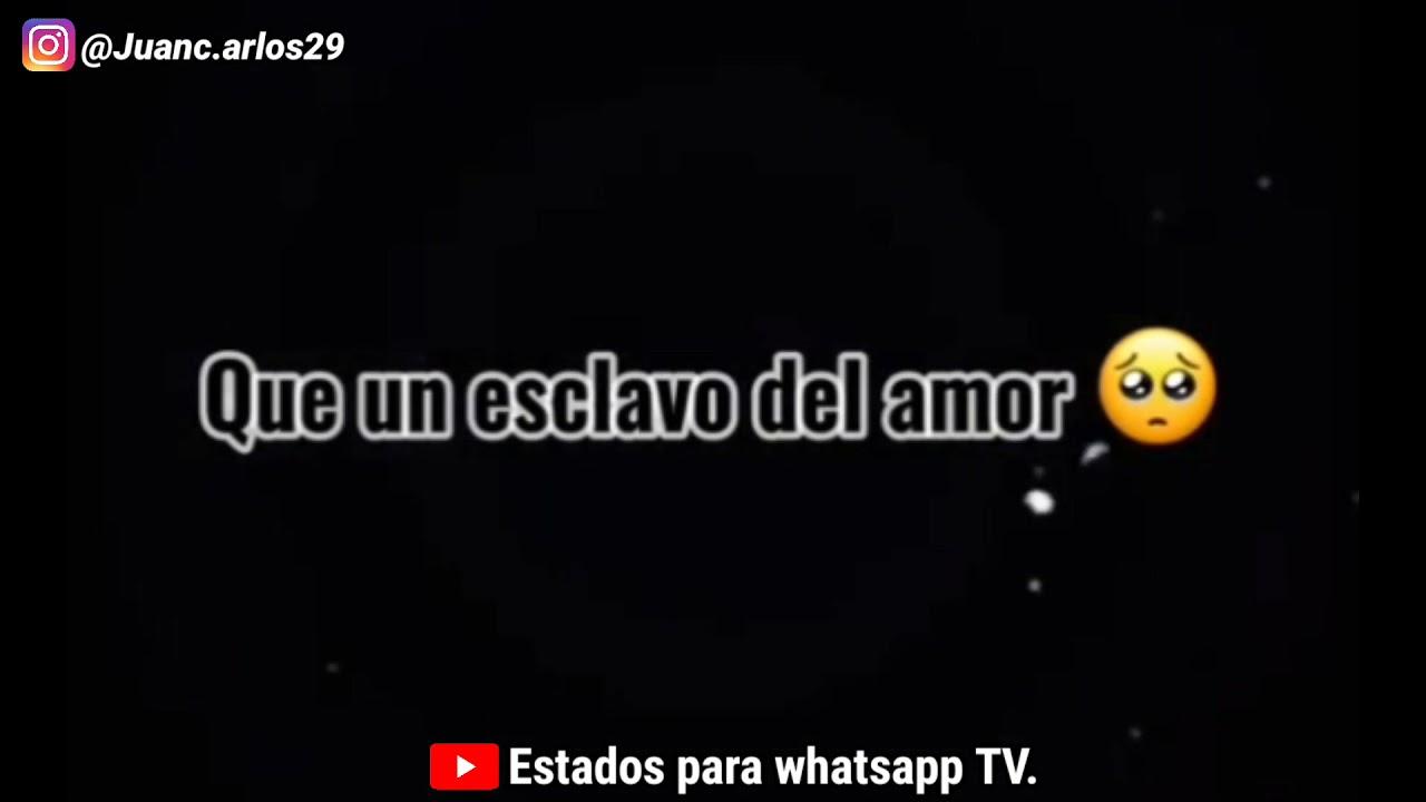 estados para whatsapp de amor del 2021 / vídeo de amor para estados de whatsapp