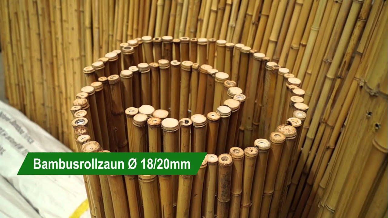 Bambusrollzaun Duchmesser 18 20mm Poppe Portal De Youtube