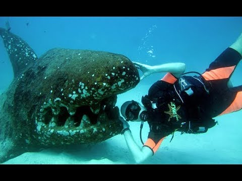 Snorkeling in Goa - ADVENTURE DESTINATIONS GOA INDIA POPULAR TOURIST DESTINATION TRAVEL TRAVEL IDEAS