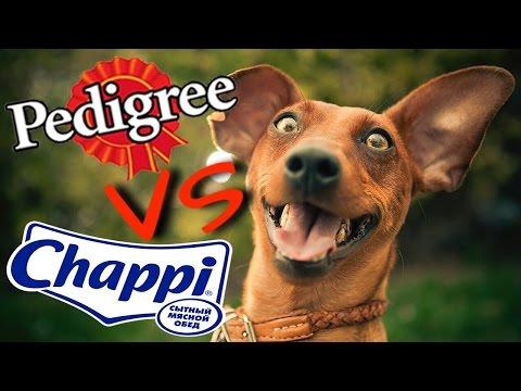 Pedigree VS Chappi