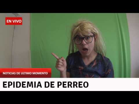 noticias de ultimo momento youtube
