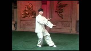 103 movements Yang Style Tai Chi form performed by Yang Jun