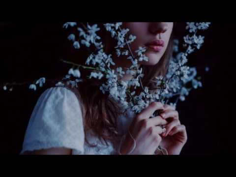 Nodsgn - All I Wanna Do