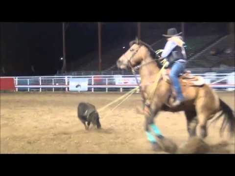Montana Western Rodeo Cody Rodeo