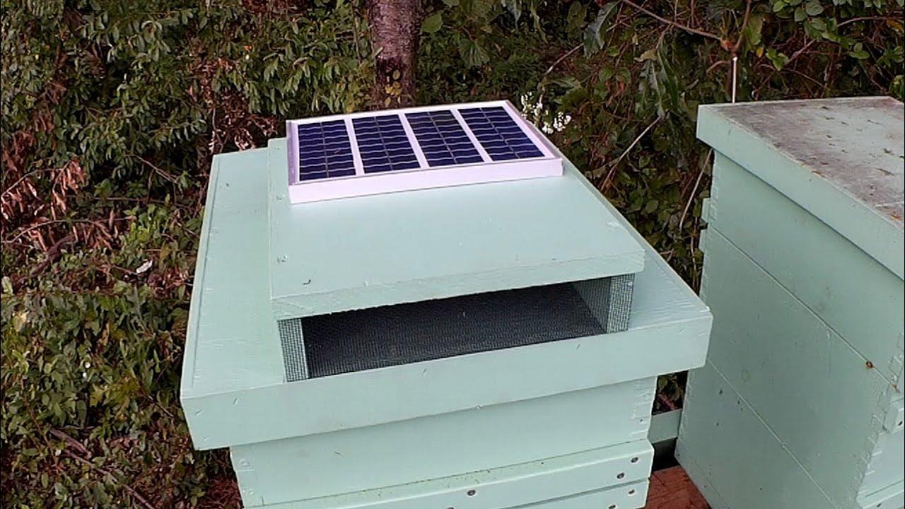 Solar Power Cooler Solar Beehive Cooler Youtube