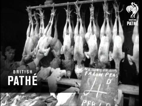 Food Eire May Help (1946)