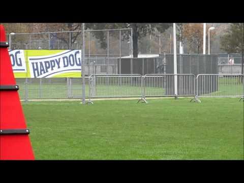 Interland Ned Belgie 2013 Nico Ouwens Juran T Palmaleinehof Youtube