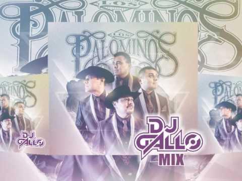 Palominos Mix Cumbias by DJ Gallo Matehuala