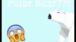 Animal Jam: Leaked Polar Bear??