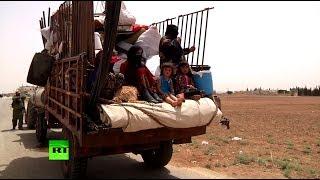 Канадский журналист: Сирийцы ждут победы над террористами и мира в стране