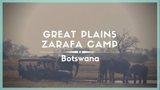 Celestielle #250 Great Plains Zarafa Camp, Selinda Reserve, Botswana