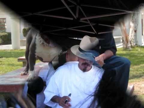ஃ Lil Rob  I'm Still Riding Like That.☠