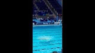 ЧМ в Казани 2015 произвольная программа сборной России