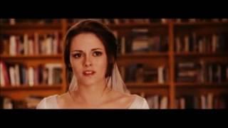 видео Свадебный фотограф